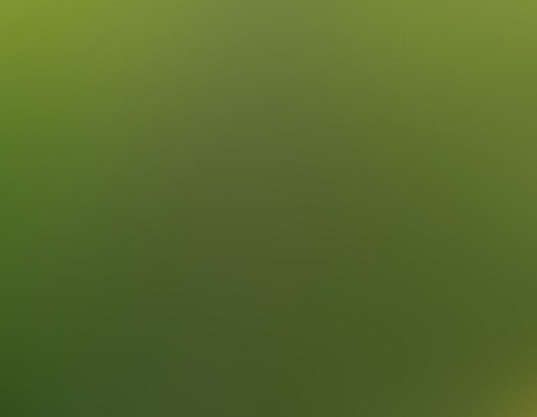 Empowerment farm rows of green